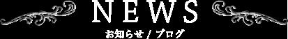 お知らせ | カテゴリー | V.I.P ONIX